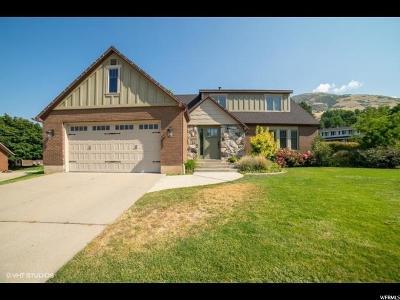 Farmington Single Family Home For Sale: 378 W Quail Flight Rd