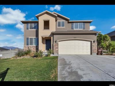 Eagle Mountain Single Family Home For Sale: 9142 N Kilkenny Way