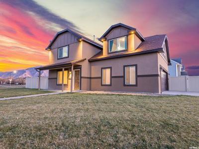 Springville Single Family Home For Sale: 1241 W 1300 S