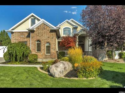 South Jordan Single Family Home Under Contract: 10817 S Willow Valley Rd W
