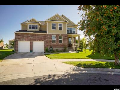Syracuse Single Family Home For Sale: 1438 Hawthorne Ln