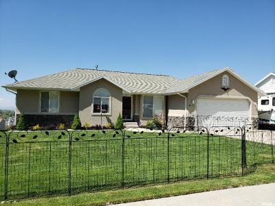Springville Single Family Home For Sale: 921 N 600 E