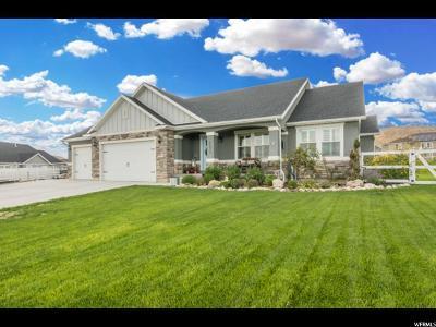 Eagle Mountain Single Family Home For Sale: 2173 E Horizon Dr #521