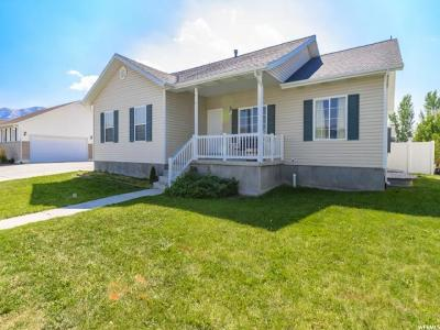 Eagle Mountain Single Family Home For Sale: 1452 E Owl Ln