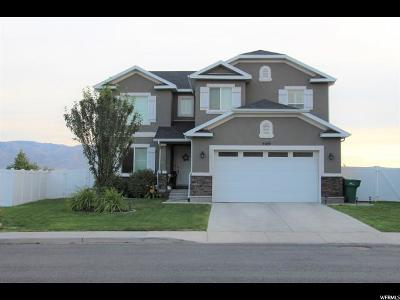 Lehi Single Family Home Under Contract: 3589 W Willow Park Dr