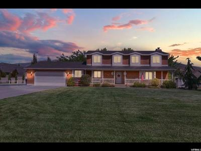Kaysville Single Family Home For Sale: 1189 S Sunset Dr W