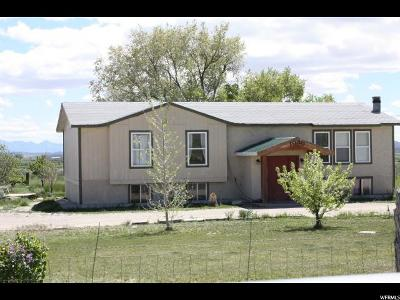 Emery County Single Family Home For Sale: 1030 N Center St.