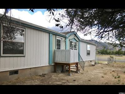 Carbon County Single Family Home For Sale: 531 E Hwy 123