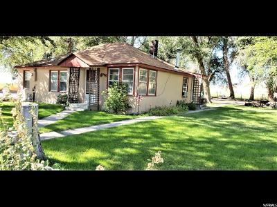 Leamington UT Single Family Home For Sale: $99,500