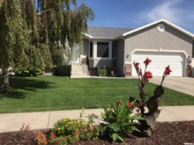 Lehi Single Family Home Under Contract: 265 S 1300 W