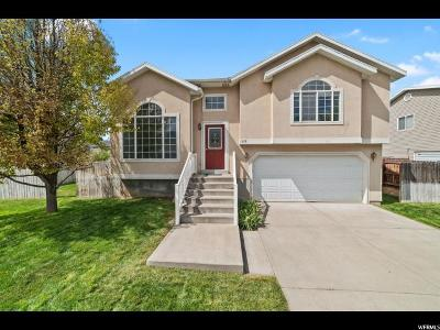 Provo Single Family Home For Sale: 1228 S 820 W