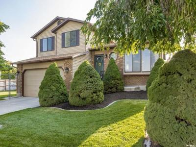 West Jordan Single Family Home For Sale: 6838 S Sparrowtail Rd
