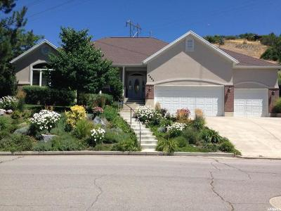 Provo Single Family Home For Sale: 4652 N Brookshire Cir E
