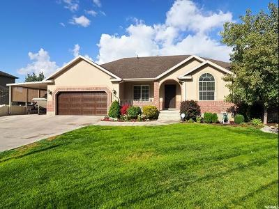 Pleasant Grove Single Family Home For Sale: 449 E 420 S