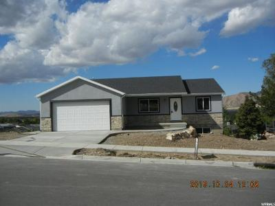 Payson Single Family Home For Sale: 1174 S 680 W