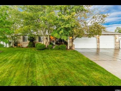 South Jordan Single Family Home For Sale: 9832 S Birdie Way W