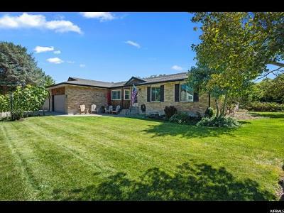 West Jordan Single Family Home For Sale: 3021 W 9050 S