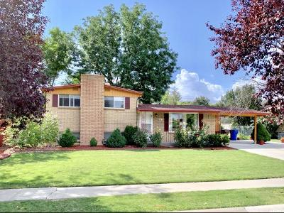 Midvale Single Family Home For Sale: 114 E Carlson Ave S