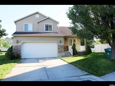 Lehi Single Family Home For Sale: 4038 N New Land Loop W #2