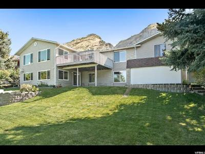Provo Single Family Home Backup: 3813 N Foothill Dr