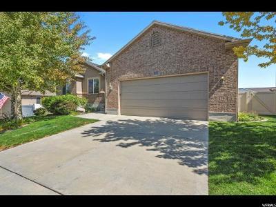 Riverton Single Family Home For Sale: 13747 S Buckeye View Way