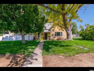 Salem Single Family Home For Sale: 385 E 100 S