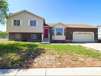 Roy Single Family Home For Sale: 3755 W 4900 S
