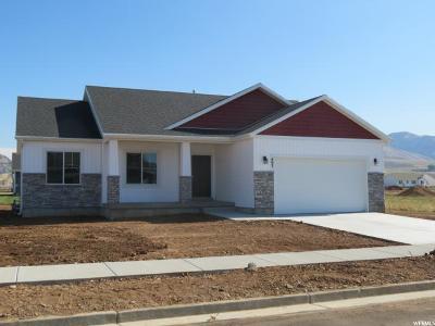 Hyrum Single Family Home For Sale: 497 S 690 E