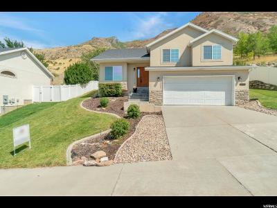 Provo Single Family Home For Sale: 2221 S Alaska E