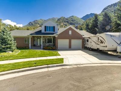 Sandy Single Family Home For Sale: 2869 E Rainbow Oaks Cir