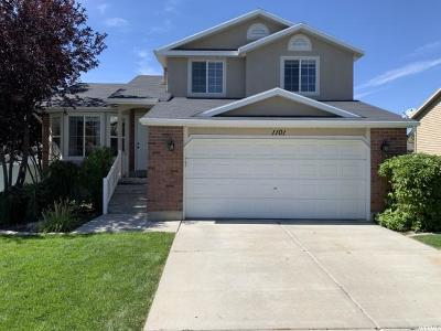 Lehi Single Family Home For Sale: 1101 N 1250 E