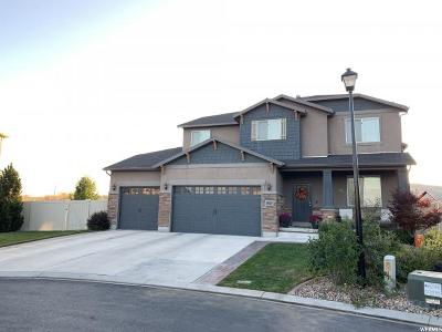 Lehi Single Family Home For Sale: 3813 N Bull Hollow Way