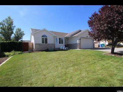 Riverton Single Family Home For Sale: 5339 Shaggy Peak Dr