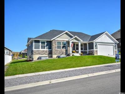 Saratoga Springs Single Family Home For Sale: 1634 S Landrock Dr