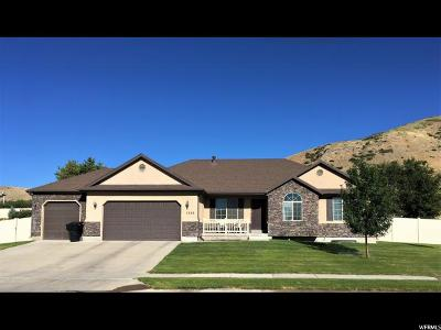 Payson Single Family Home For Sale: 1565 S Riley Dr