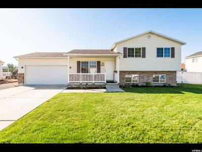 Lehi Single Family Home For Sale: 2077 W 1835 N
