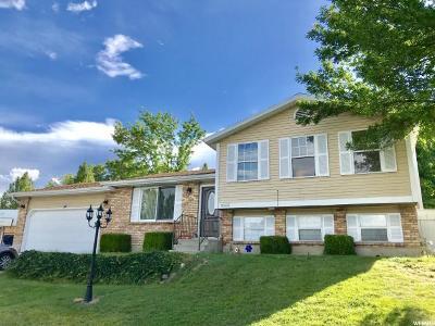Sandy Single Family Home For Sale: 10633 S 1120 E