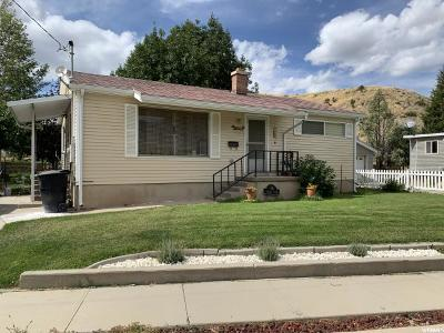Carbon County Single Family Home For Sale: 38 Fabrizio