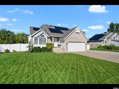 Syracuse Single Family Home For Sale: 2052 Allison Way