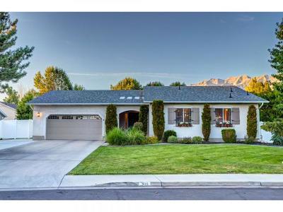Orem Single Family Home For Sale: 925 E 250 S