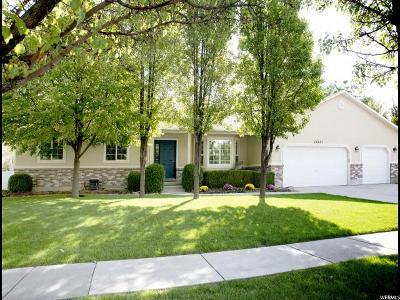 Riverton Single Family Home For Sale: 12237 Grassland Ct W