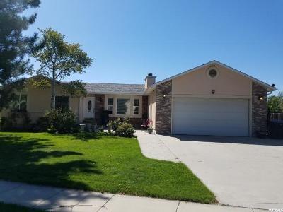 West Jordan Single Family Home For Sale: 2461 W Jordan Meadows Ln