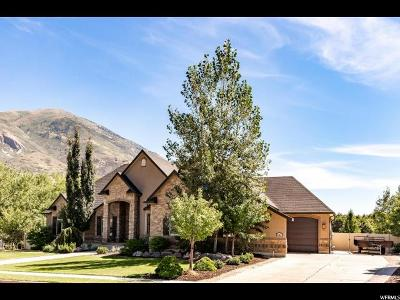 Cedar Hills Single Family Home For Sale: 4137 W Mesquite Way