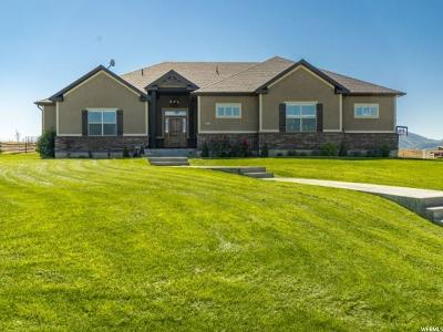 Hyrum Single Family Home For Sale: 2870 W 6500 S
