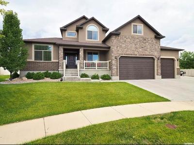 West Jordan Single Family Home For Sale: 6082 W Cedar Fork Dr S