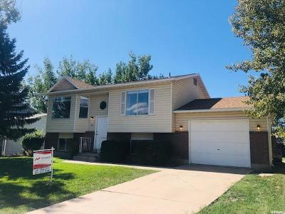 Layton Single Family Home For Sale: 1635 N 275 W
