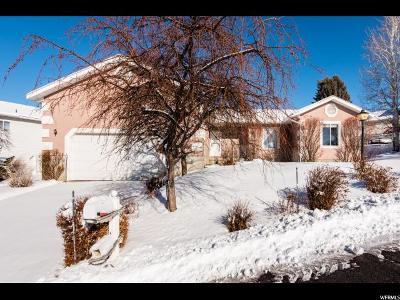 Logan Single Family Home For Sale: 1063 E 100 S