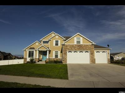 West Jordan Single Family Home For Sale: 8153 S Tukford Cir W