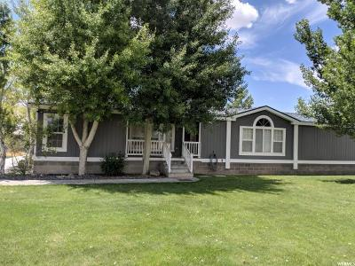 Single Family Home For Sale: 755 N 4600 W