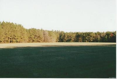 Sussex County Land For Sale: 20505 Andrews Rd